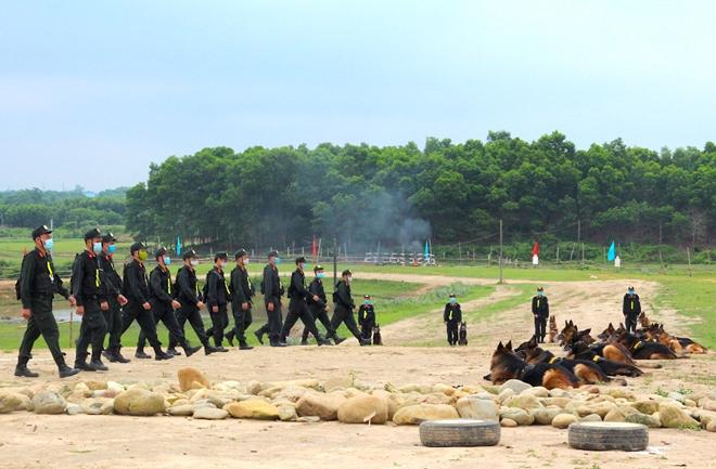 Lực lượng kỵ binh, chó nghiệp vụ sẵn sàng các phương án bảo vệ bầu cử - Ảnh minh hoạ 3