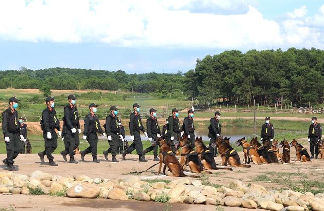 CSCĐ sử dụng chó nghiệp vụ trình diễn kỹ chiến thuật trấn áp tội phạm - Ảnh minh hoạ 5