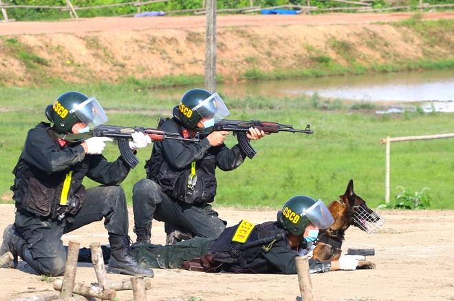 CSCĐ sử dụng chó nghiệp vụ trình diễn kỹ chiến thuật trấn áp tội phạm - Ảnh minh hoạ 10