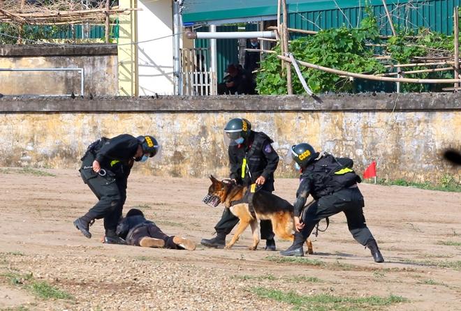 CSCĐ sử dụng chó nghiệp vụ trình diễn kỹ chiến thuật trấn áp tội phạm - Ảnh minh hoạ 17