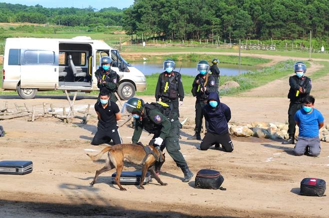 CSCĐ sử dụng chó nghiệp vụ trình diễn kỹ chiến thuật trấn áp tội phạm - Ảnh minh hoạ 12