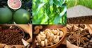 Nông sản Việt muốn bứt phá phải cải thiện khâu yếu nhất