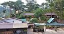Đua nhau lấn chiếm, xây dựng trên đất Vườn Quốc gia Bidoup - Núi Bà