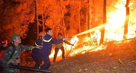 Khen thưởng Phòng Cảnh sát PCCC và CNCH CA Nghệ An trong chữa cháy rừng