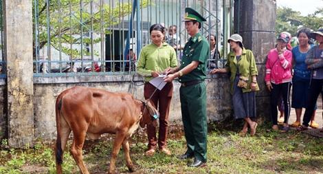 Khối thi đua số 9 tỉnh ĐắK Nông tặng học bổng và bò giống cho bà con nghèo