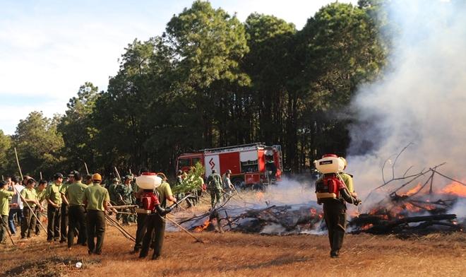 Diễn tập chữa cháy rừng ở Gia Lai