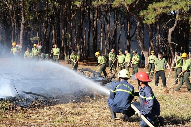 Diễn tập chữa cháy rừng ở Gia Lai - Ảnh minh hoạ 2