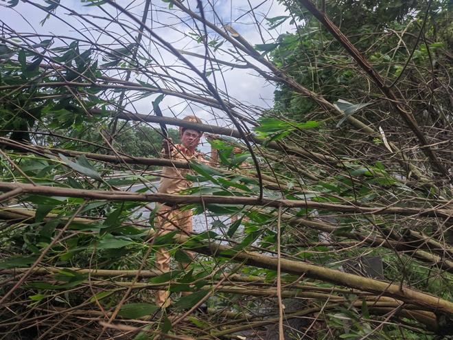 CSGT xử lý nhiều điểm cây đổ trên cao tốc Pháp Vân - Ninh Bình - Ảnh minh hoạ 4