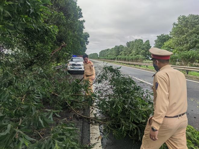 CSGT xử lý nhiều điểm cây đổ trên cao tốc Pháp Vân - Ninh Bình - Ảnh minh hoạ 3