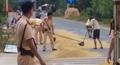 CSGT giúp dân gom lúa tránh mưa được ngợi khen