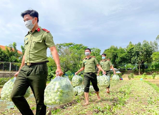 Công an An Giang gửi tặng TP Hồ Chí Minh 30 tấn nông sản - Ảnh minh hoạ 3