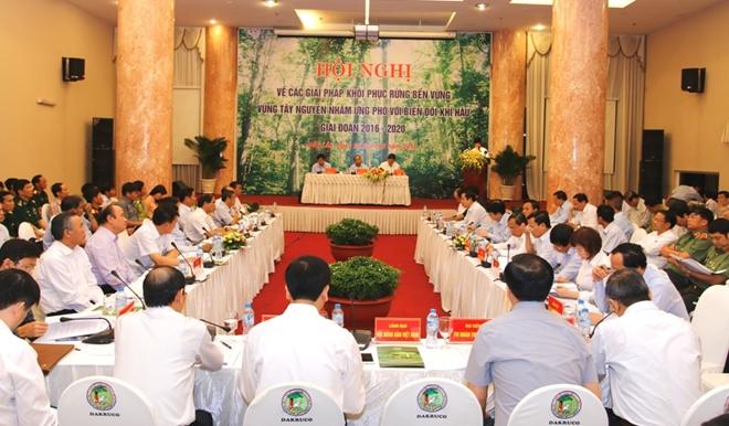 Tìm giải pháp khôi phục bền vững rừng vùng Tây Nguyên