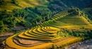 Startup Việt giành ngôi vị Á quân trong cuộc thi khởi nghiệp du lịch của khu vực