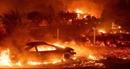 Mỹ xác nhận gần 1.000 người mất tích trong vụ cháy rừng ở California