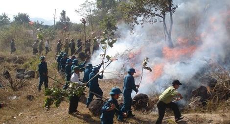Nhiều vụ cháy rừng xảy ra do người dân thiếu kiến thức