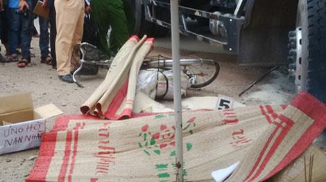 Đâm tử vong người bán gạo trên đường đi sửa xe - ảnh 1